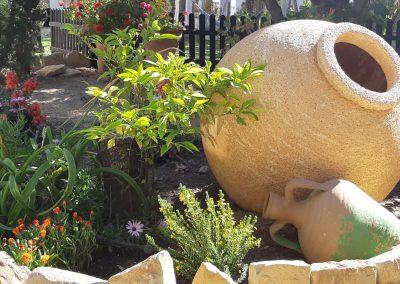 Garden with pot