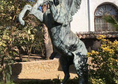 Horse Garden